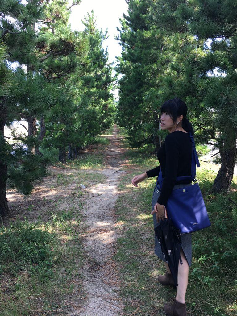 津田の松原散歩