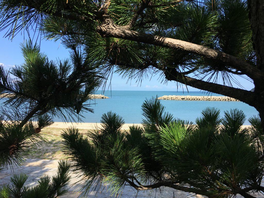津田の松原風景