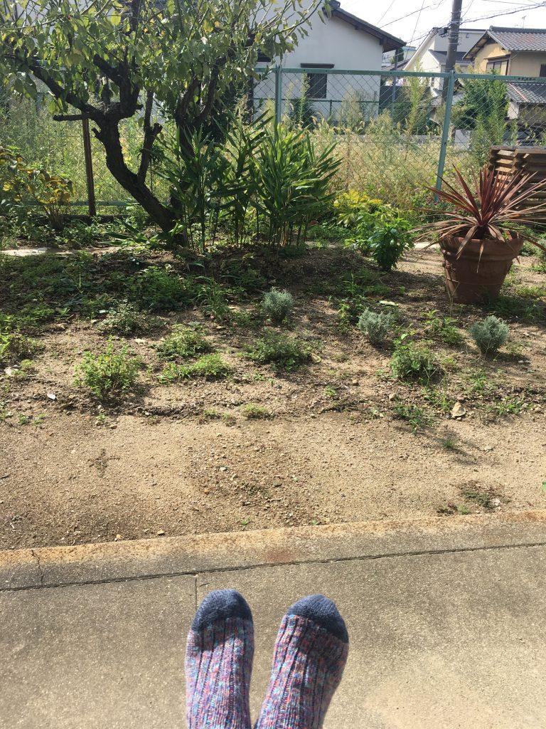絢美の庭で足をあっためる
