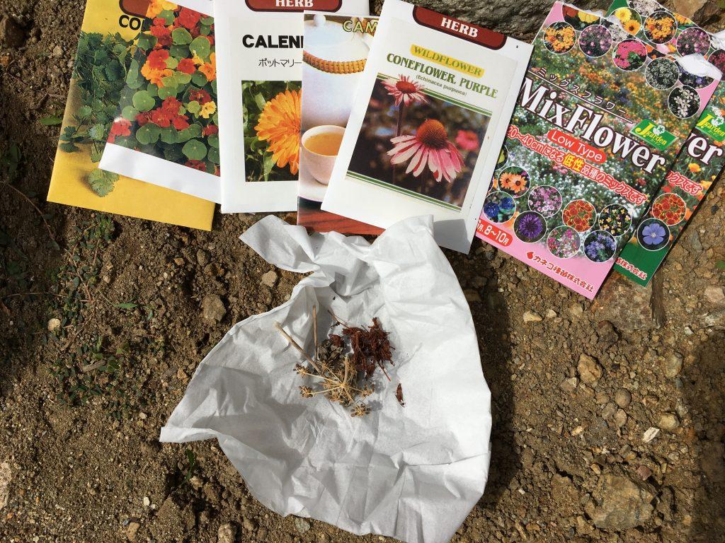 絢美の庭に撒いた種