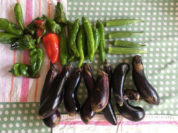 妹の家庭菜園の野菜