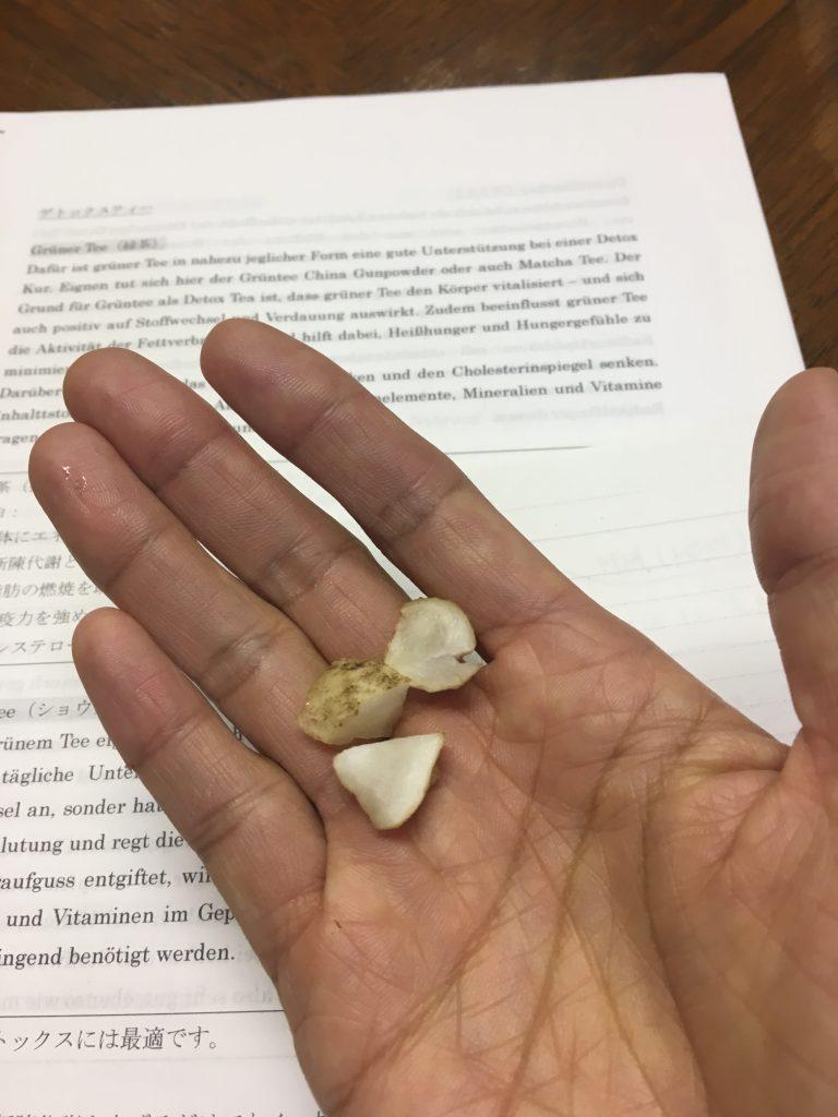 菊芋のカット