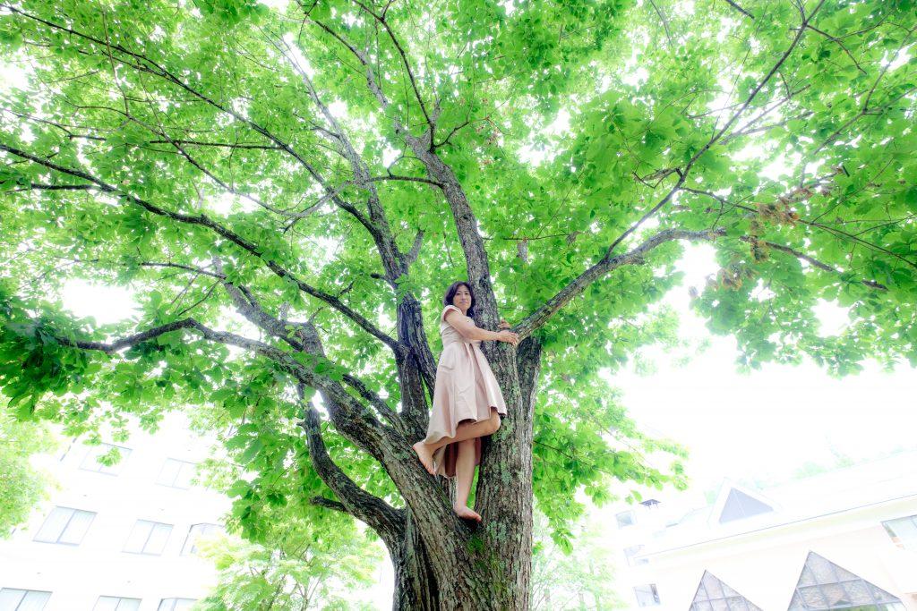 木の上でドレス