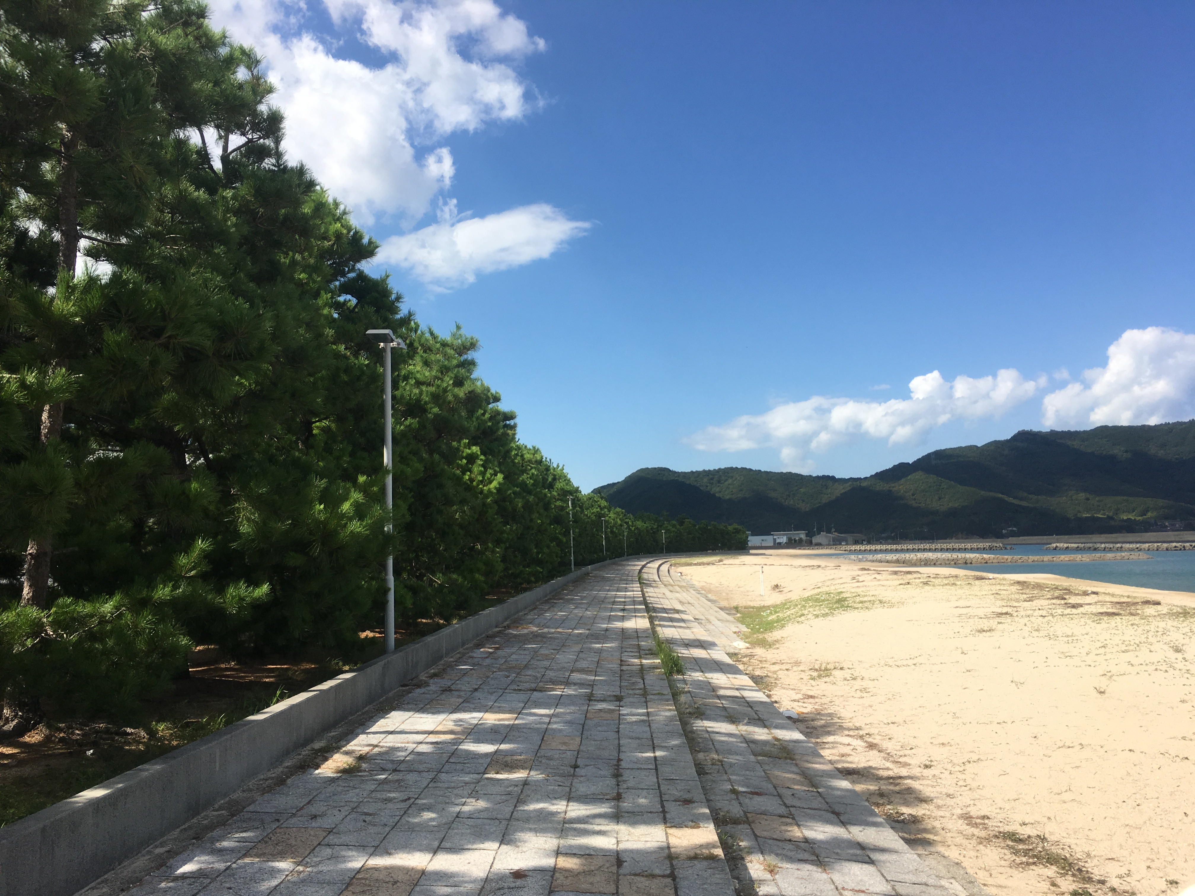 津田松原海岸